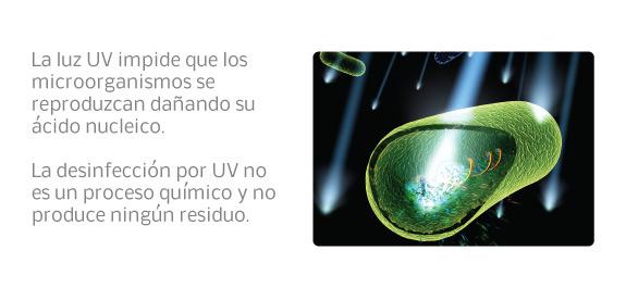 La luz UV daña el ácido nucleico de los microorganismos, impidiendo que se reproduzcan