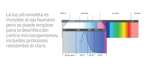 La  luz ultravioleta es invisible al ojo humano pero puede emplearse para la desinfección contra microorganismos, incluidos protozoos resistentes al cloro